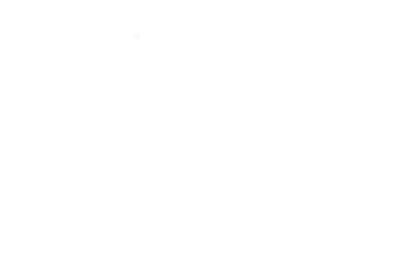 truck_white